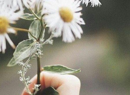 Primavera: tempo di rinascita e speranza!