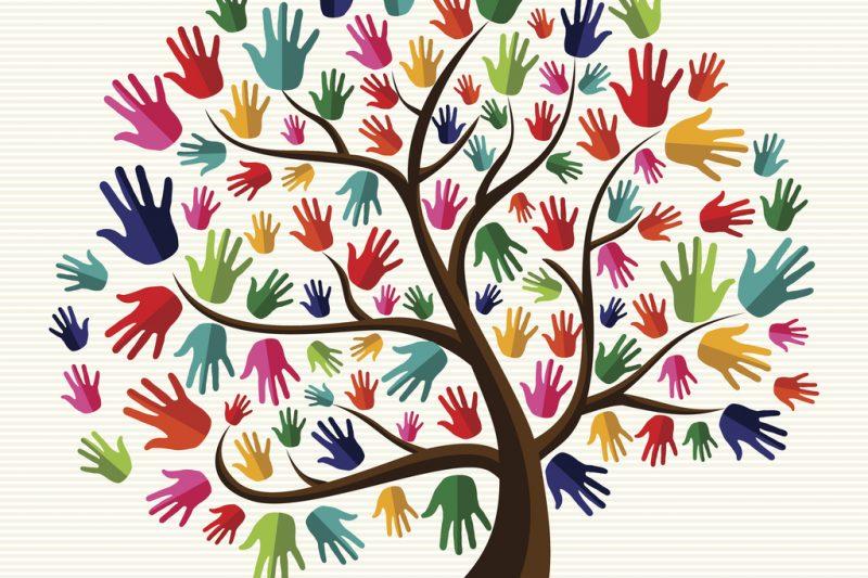 Come foglie dello stesso albero i ragazzi a scuola e nel mondo